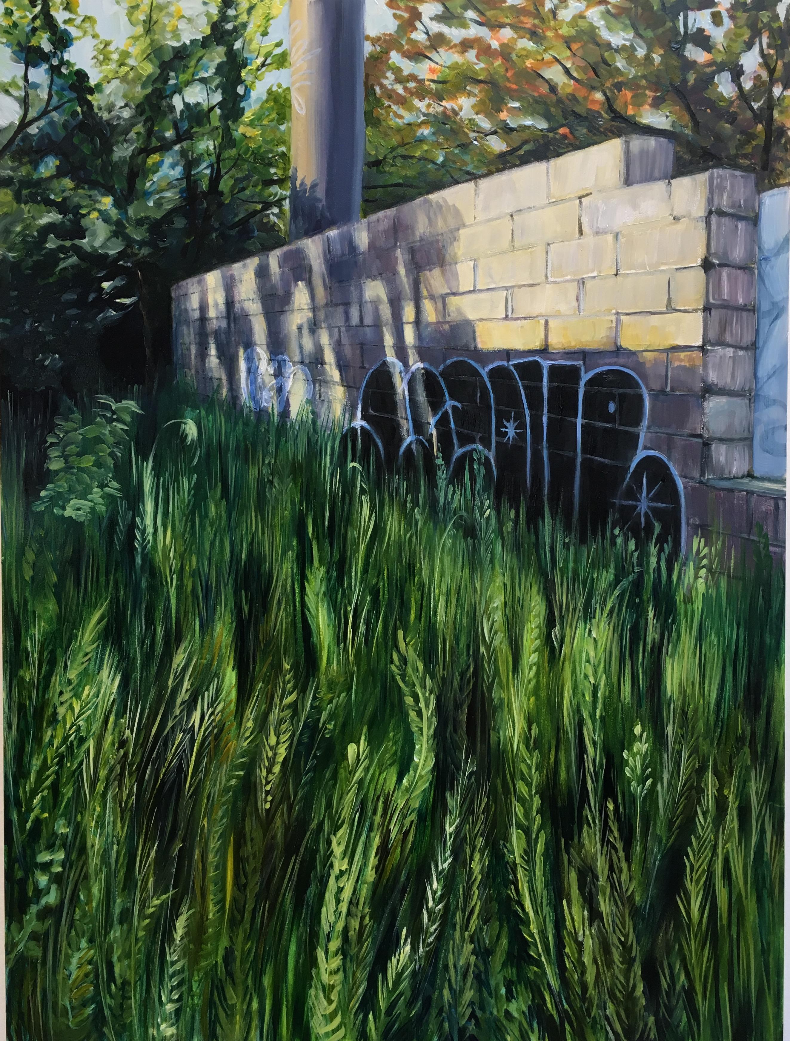 Empty Lot: Field of Grass, left